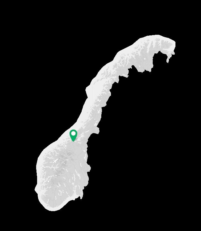 Norgeskart orkdalsregionen